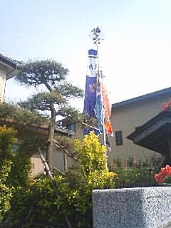 のぼり1.jpg