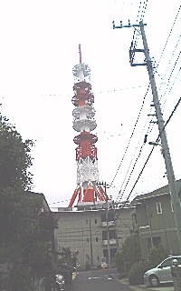 塔.jpg