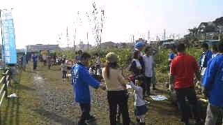 桜植樹4.jpg
