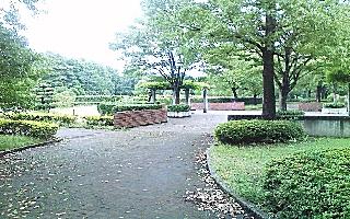 流山公園.jpg